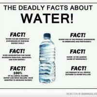 7 Logical Fallacies Simplified