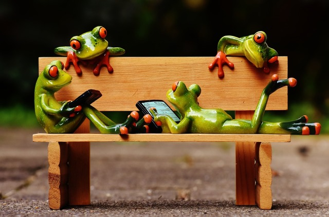 Funny Relaxed Frogs Computer Bench Rest Fig Bank