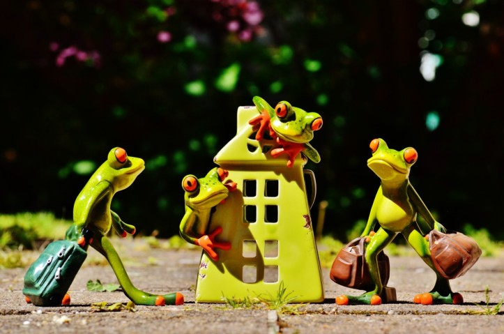 frogs_at_home_welcome_arrive_deco_funny_frog_decoration-619466