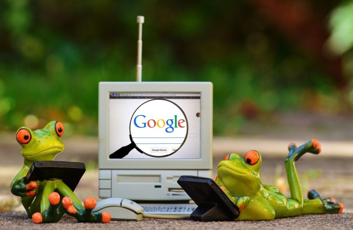 frogs_computer_google_search_laptop_funny_cute_figure-844156