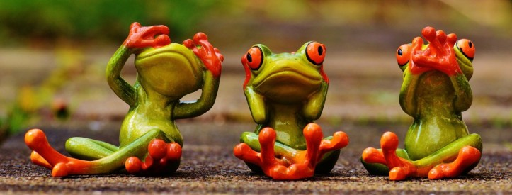 frogs_not_see_not_hear_do_not_speak_funny_cute_figures_fun-643318