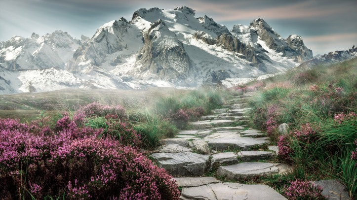 mountain-landscape-with-flowers-and-hiking-steps-in-steinweg-germany